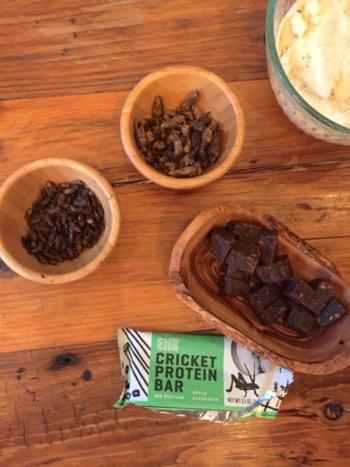 insetti nuovo trend alimentare in America
